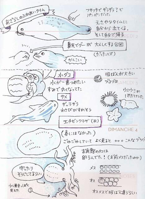 f:id:tukatukasa:20161025105302j:image