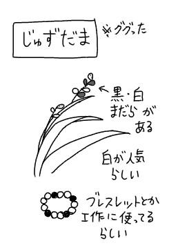 f:id:tukatukasa:20161111101058j:image