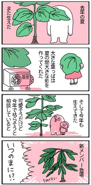 f:id:tukatukasa:20170908102728j:image
