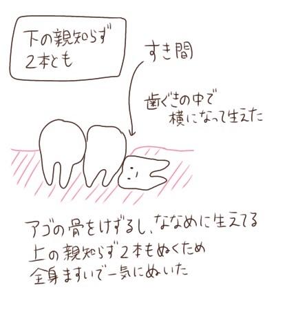 f:id:tukatukasa:20210702144504j:image