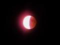 あなたと同じ月を、私も見ていた。