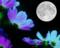 お月さまが見つけた「小さい秋」