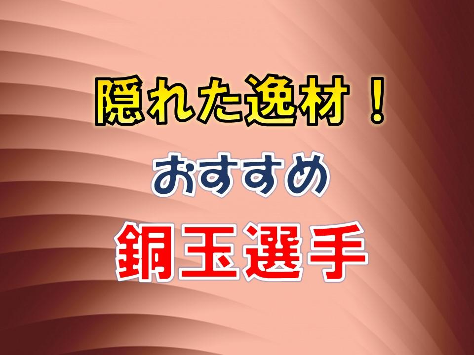 f:id:tukigo:20190820094428j:plain