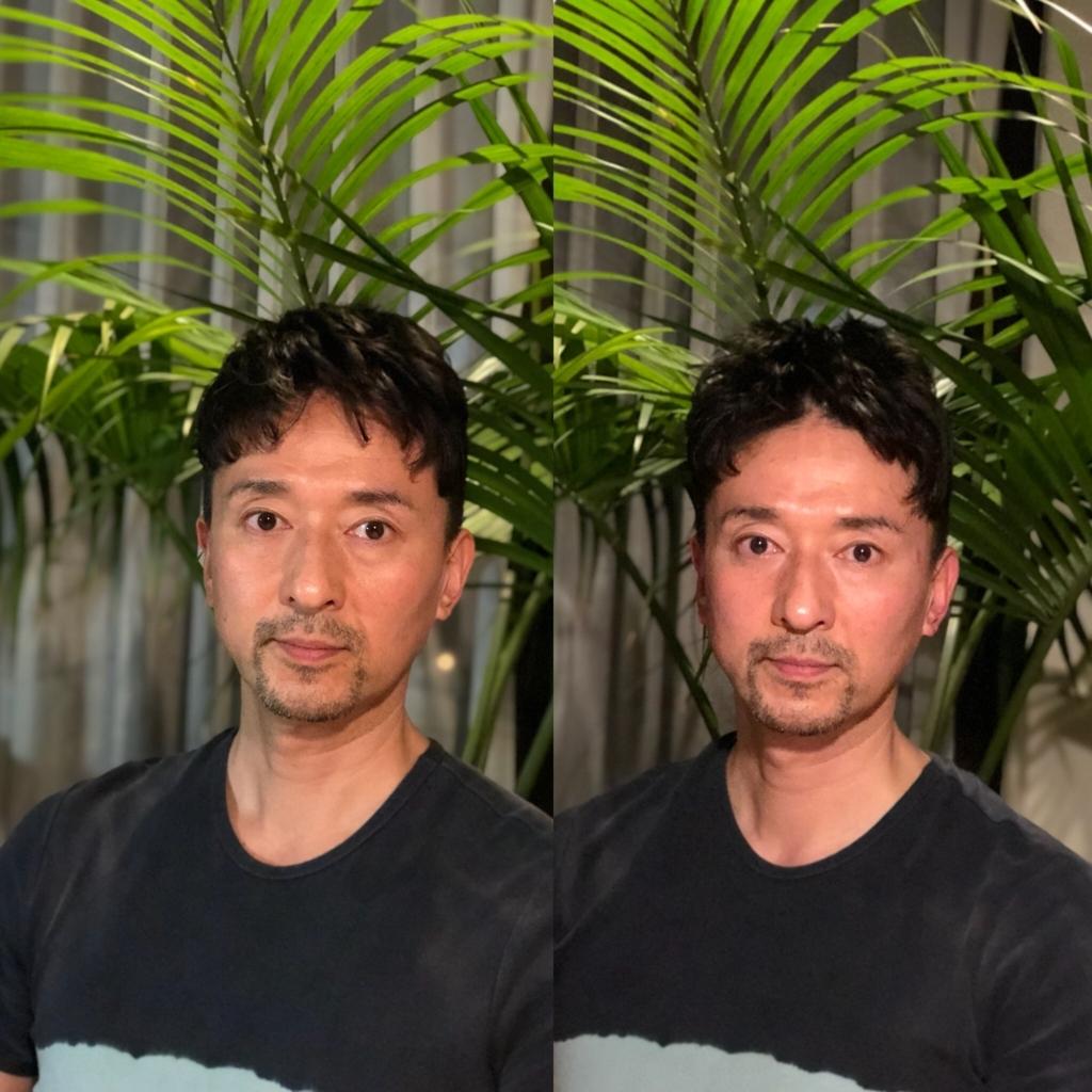 f:id:tukihi3ri:20180506122048j:plain