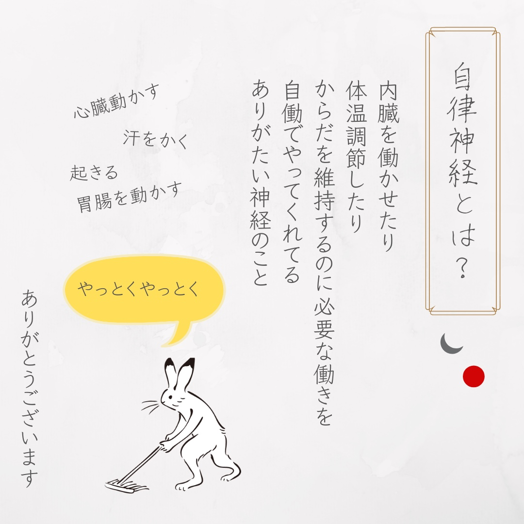 f:id:tukihi3ri:20200519161713j:plain