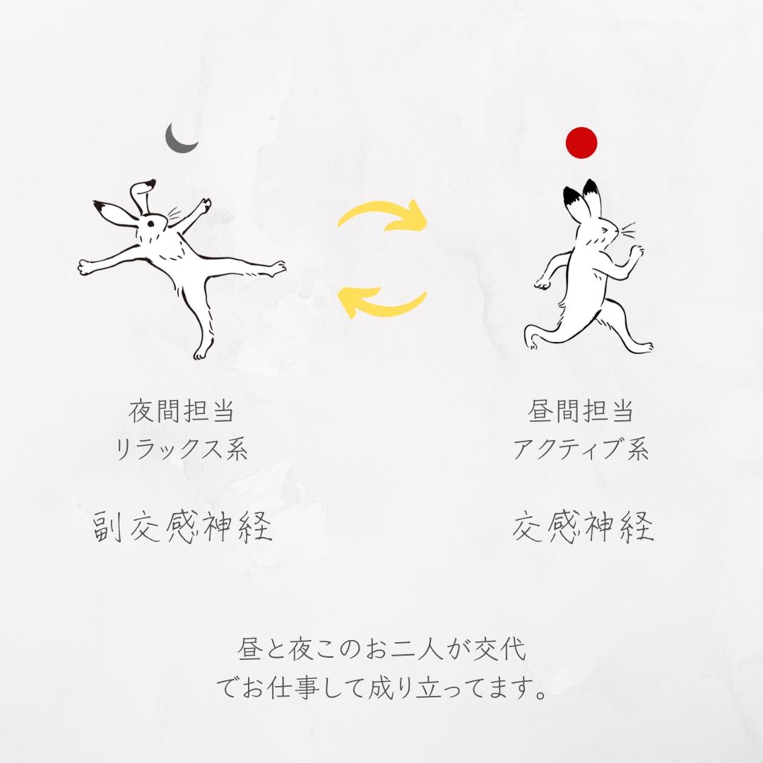 f:id:tukihi3ri:20200519162111j:plain