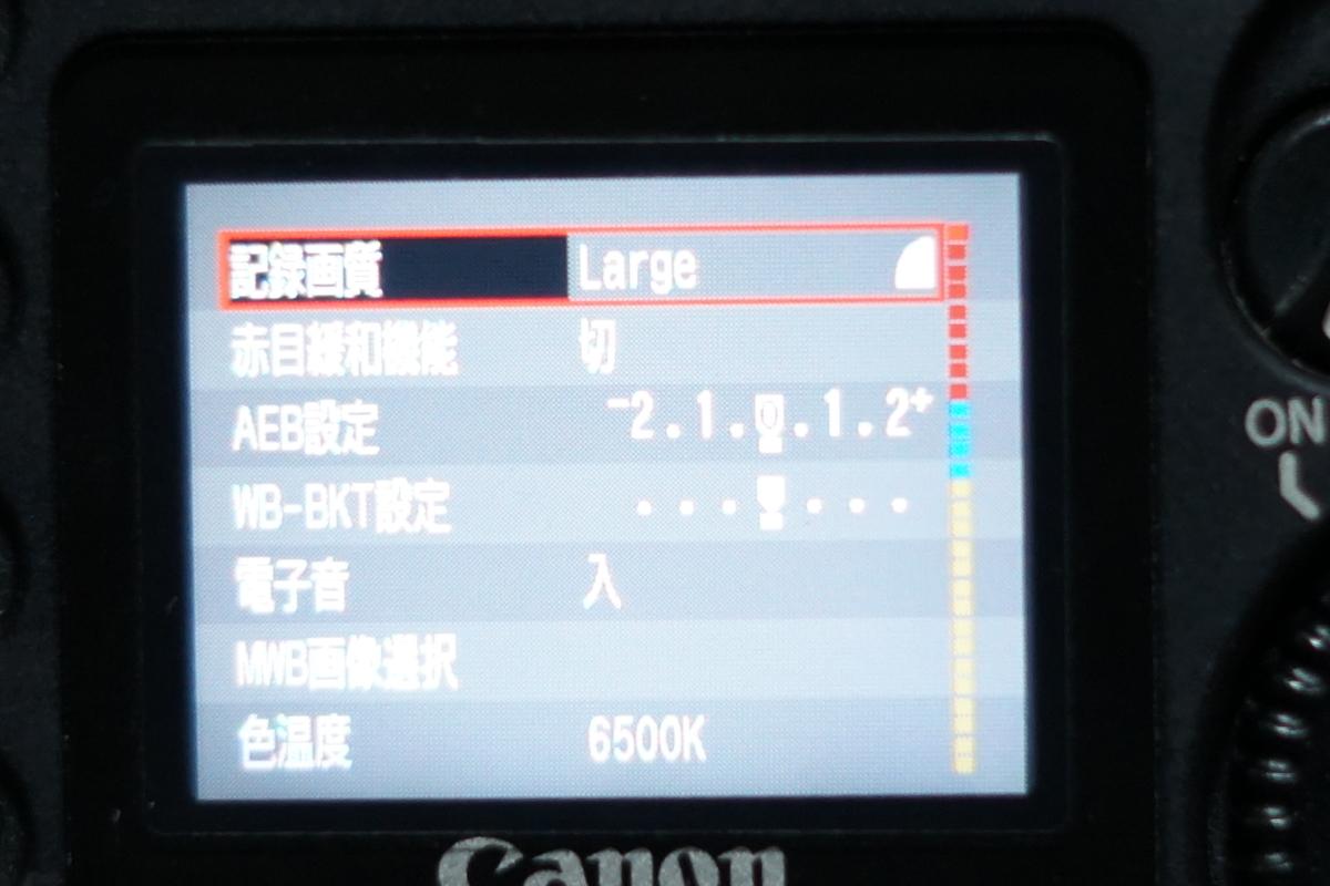 f:id:tukikoneko:20200425012907j:plain