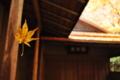 『京都新聞写真コンテスト 蜘蛛の糸』