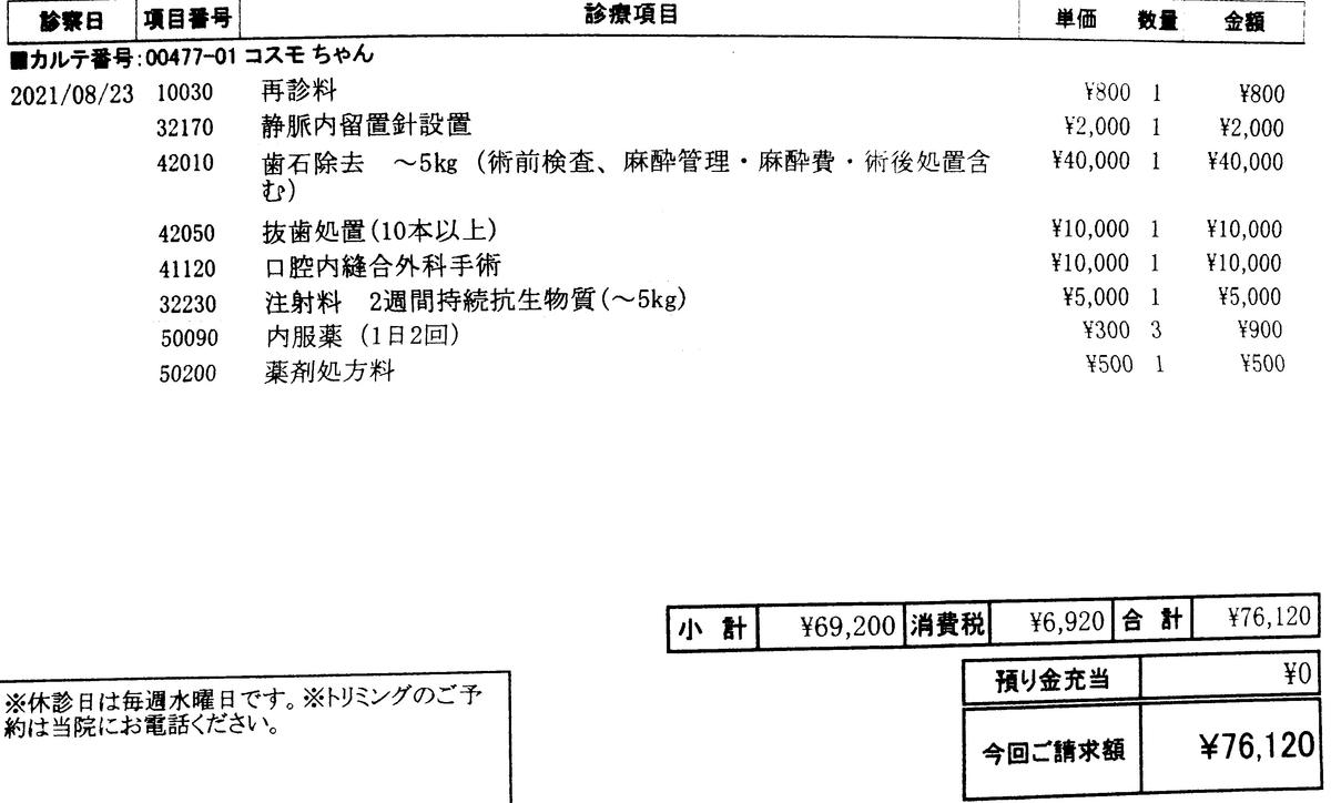 f:id:tukinowaguma007:20210825162928j:plain