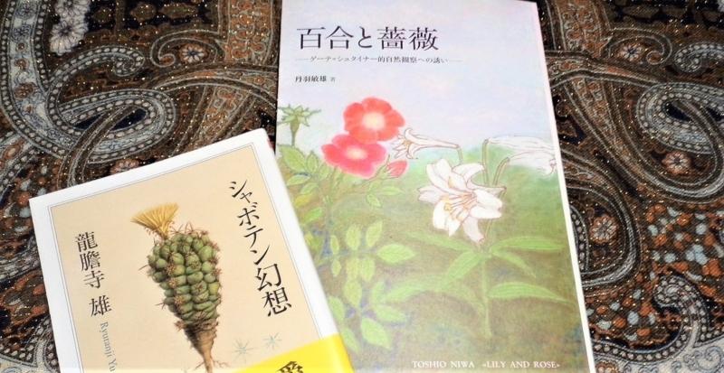 f:id:tukinoyume:20170825062720j:plain