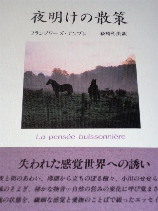 f:id:tukinoyume:20180510153006j:plain