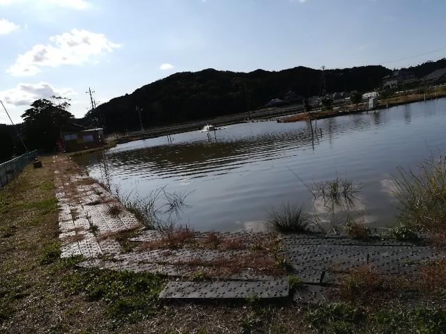 f:id:tukinukeroman:20171117193446j:image