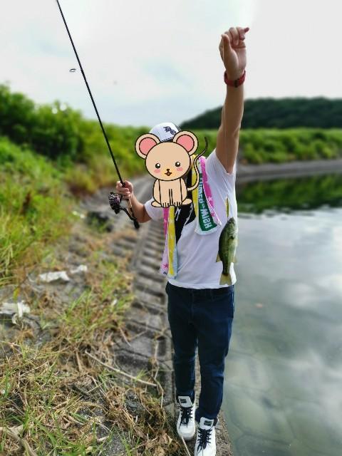 f:id:tukinukeroman:20190812161014j:image