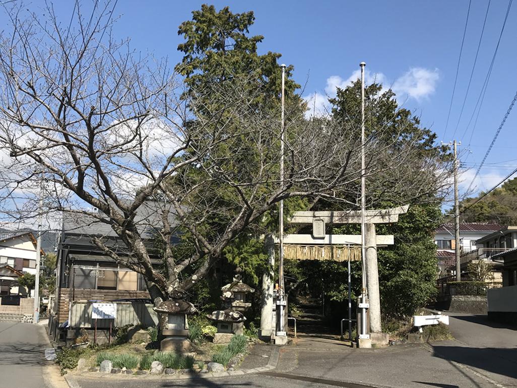 f:id:tukishiro_art_lab:20200329034223j:plain