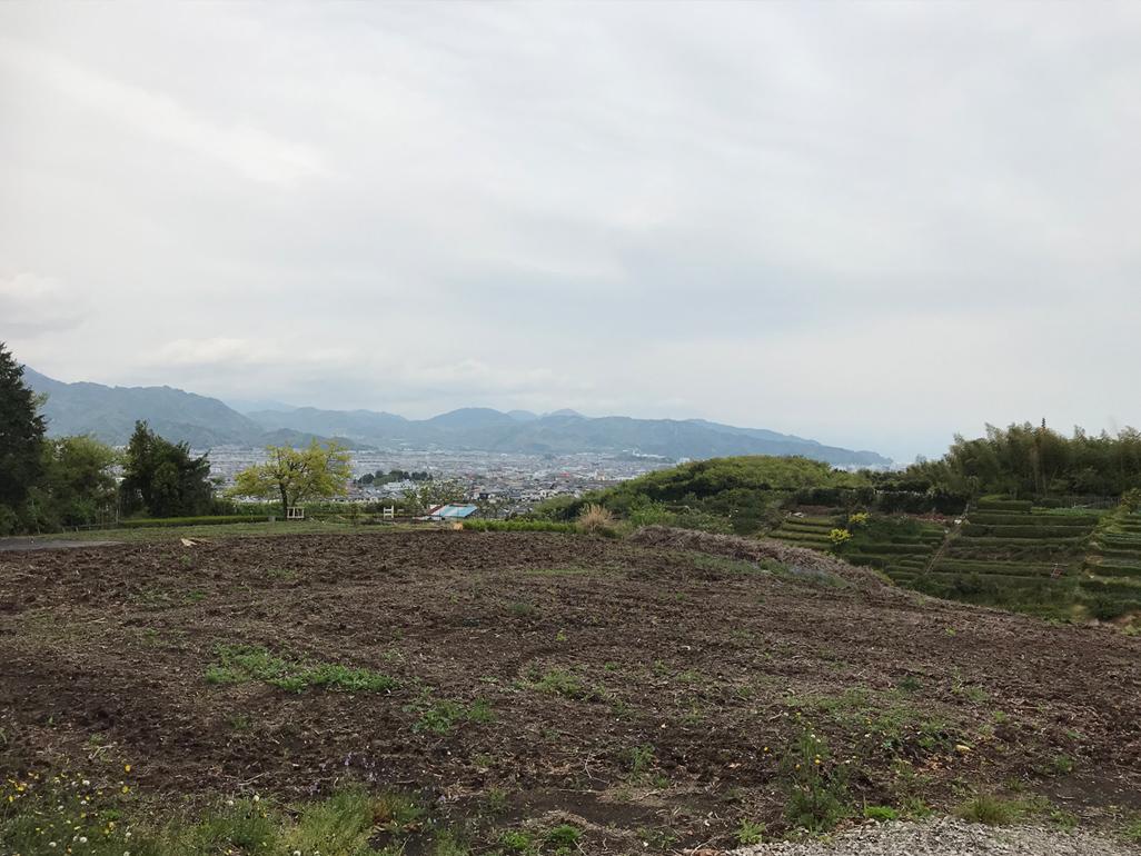 f:id:tukishiro_art_lab:20200421152728j:plain