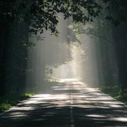 霊格の意味!霊格の成長の先は、何が待ち受けている?