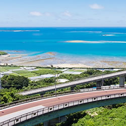 沖繩のユタに会うには!可能性