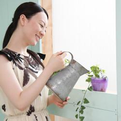 『植物』と『霊感』の関係、命のある植物に意識を向ける