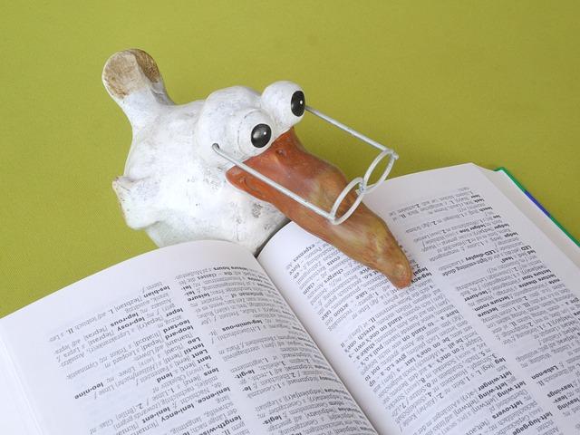 本を読むアヒル