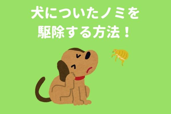 f:id:tukisima_000:20171215230929j:plain