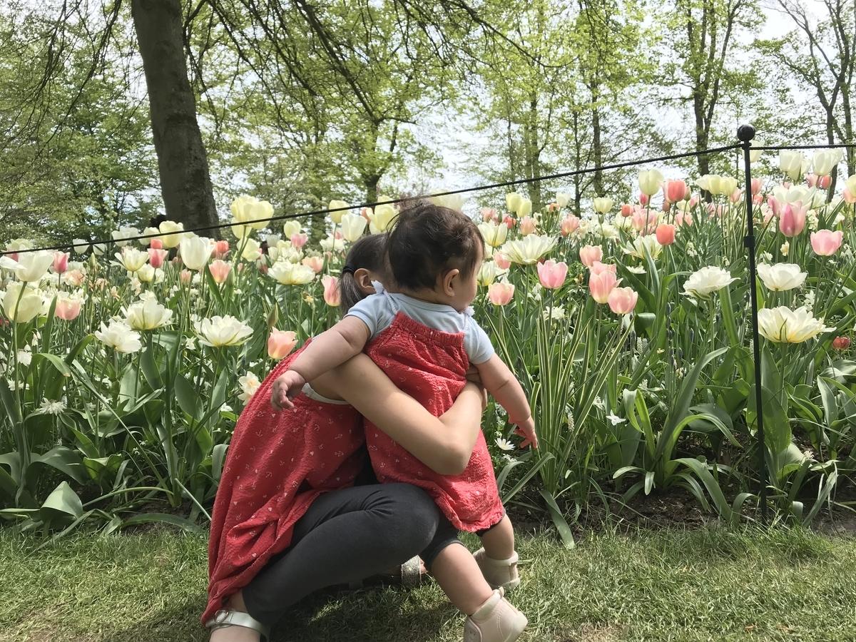 f:id:tulip_51:20190426024701j:plain