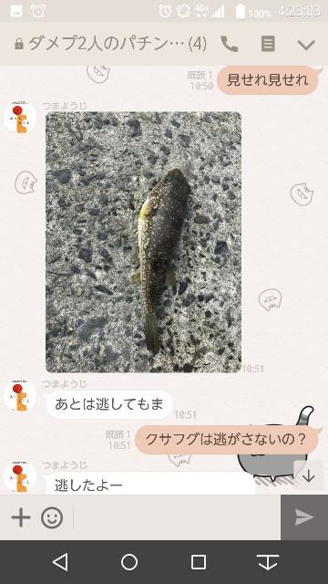 f:id:tumamimi:20171114043556j:plain