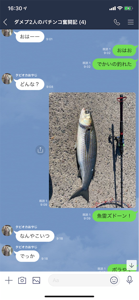 f:id:tumamimi:20191015163547p:image