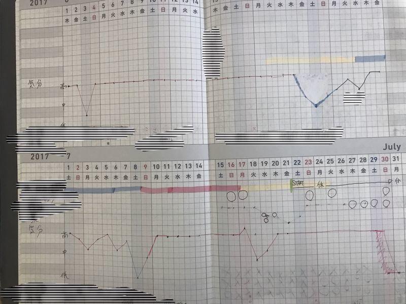ジブン手帳 月間プロジェクト 感情記録 折れ線グラフ