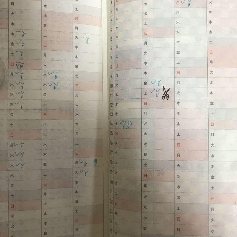 ほぼ日weeks 年間スケジュール 気分記録