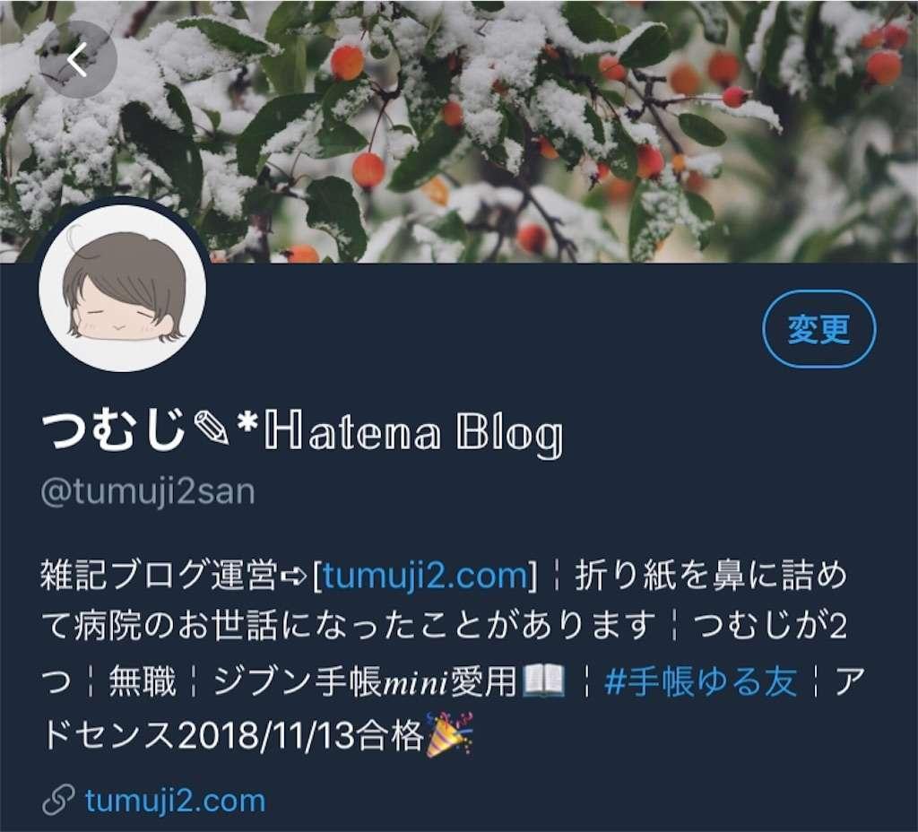 Plain Style Twitter