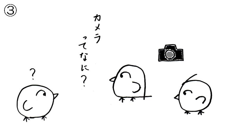 f:id:tuna-kichi:20200615224632p:plain