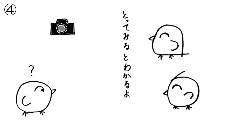 f:id:tuna-kichi:20200615224658p:plain