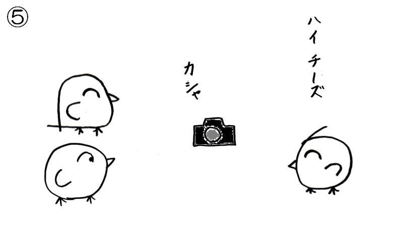f:id:tuna-kichi:20200615224710p:plain