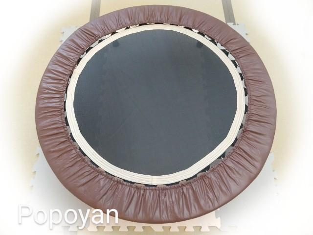 f:id:tuneni-nemunemu-popoyan:20200303133449j:image