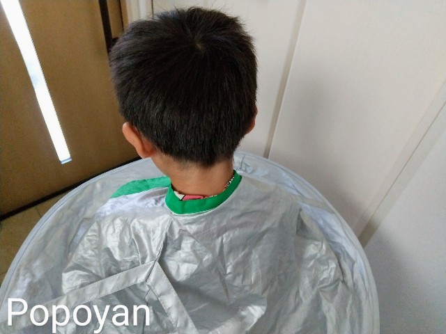 f:id:tuneni-nemunemu-popoyan:20200410101309j:image