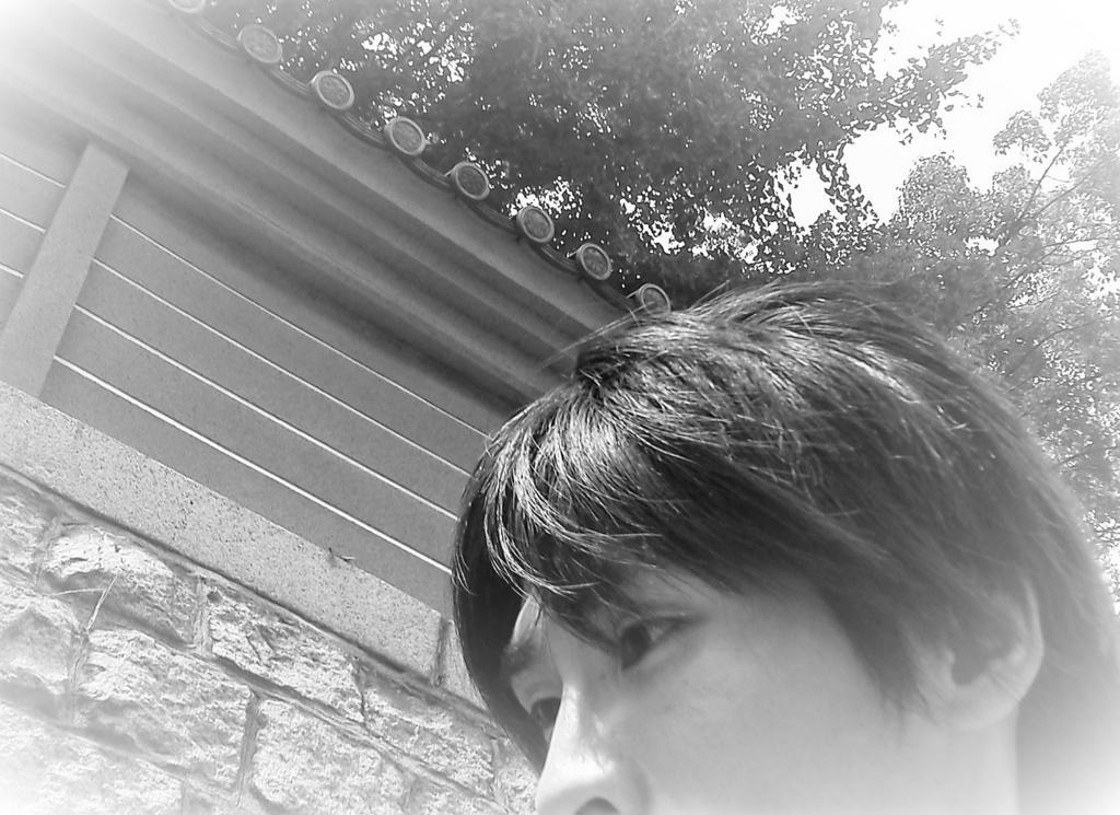 f:id:turara_an755:20170823190448j:plain