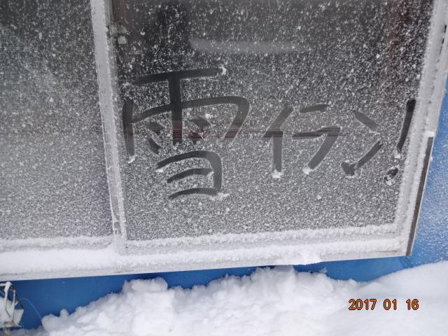 f:id:turikichijob:20170116082153j:plain