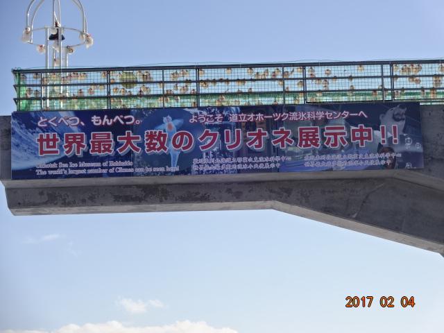 f:id:turikichijob:20170204131424j:plain