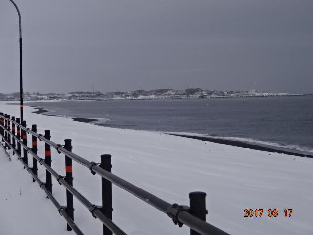 f:id:turikichijob:20170317095902j:plain