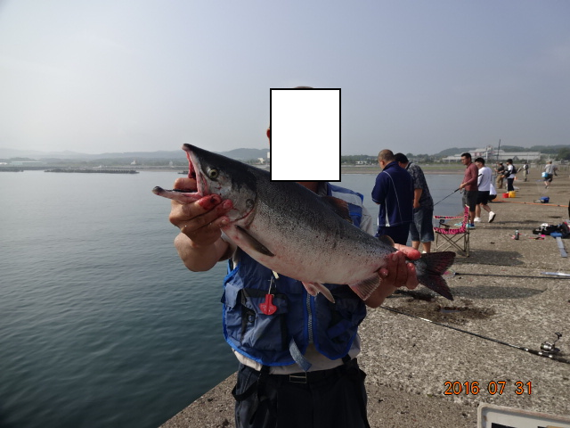 f:id:turikichijob:20180129132023p:plain