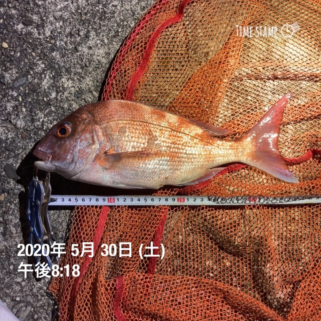 f:id:turikitikun1977:20200530222744j:image