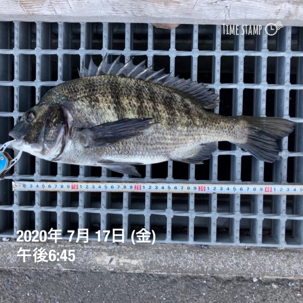 f:id:turikitikun1977:20200717195841j:image