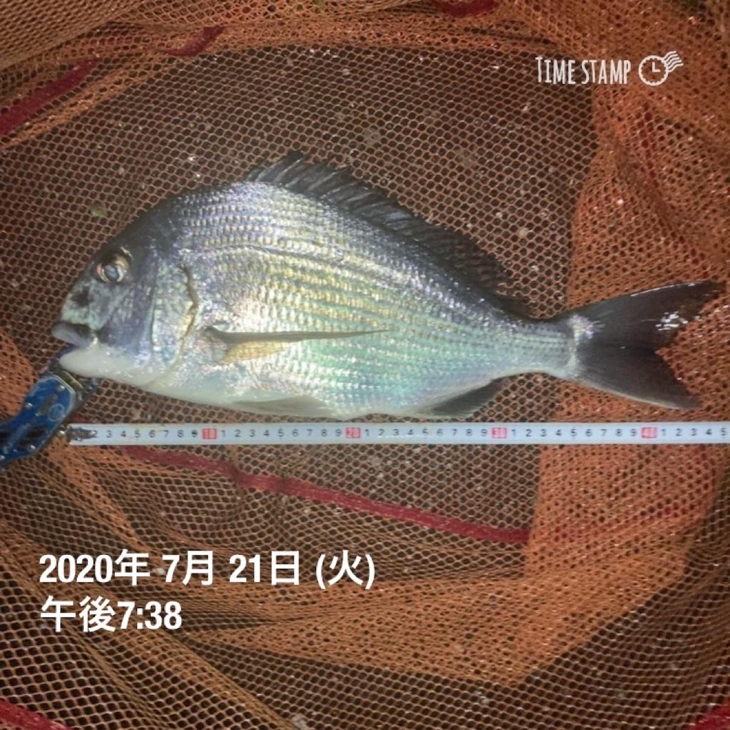f:id:turikitikun1977:20200721204327j:image