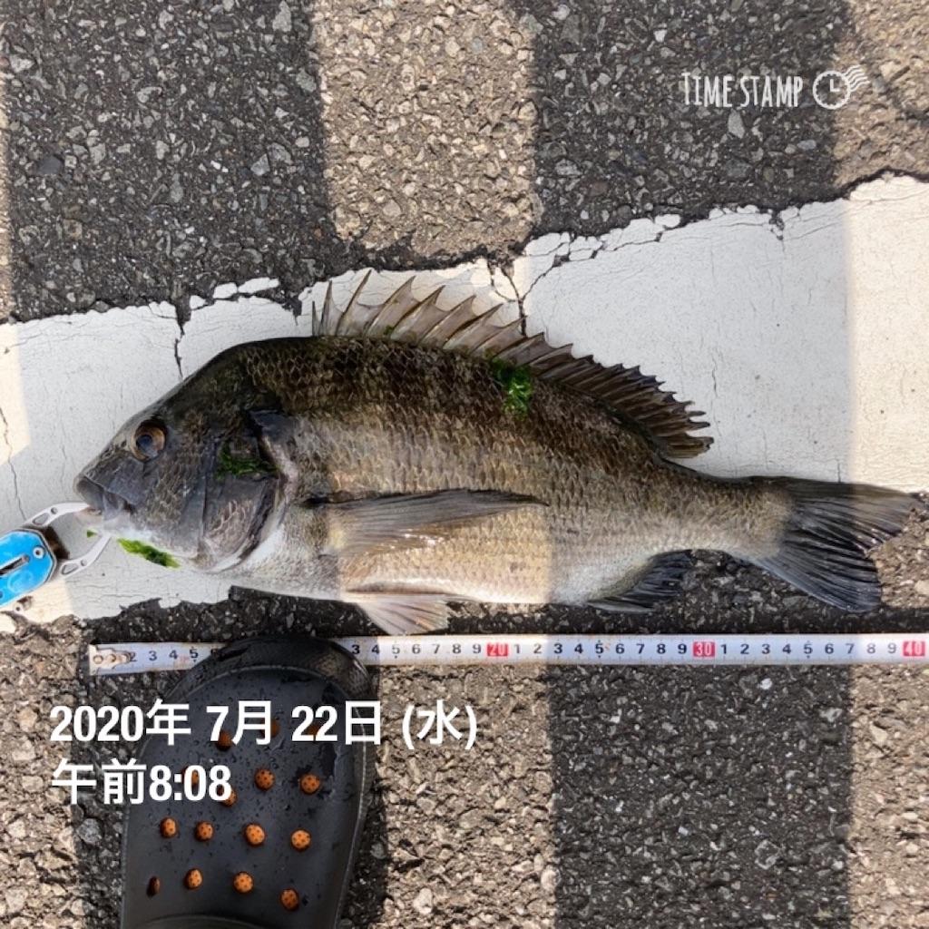 f:id:turikitikun1977:20200722090750j:image
