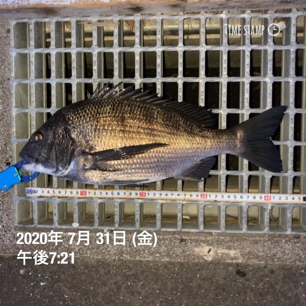 f:id:turikitikun1977:20200731202945j:image