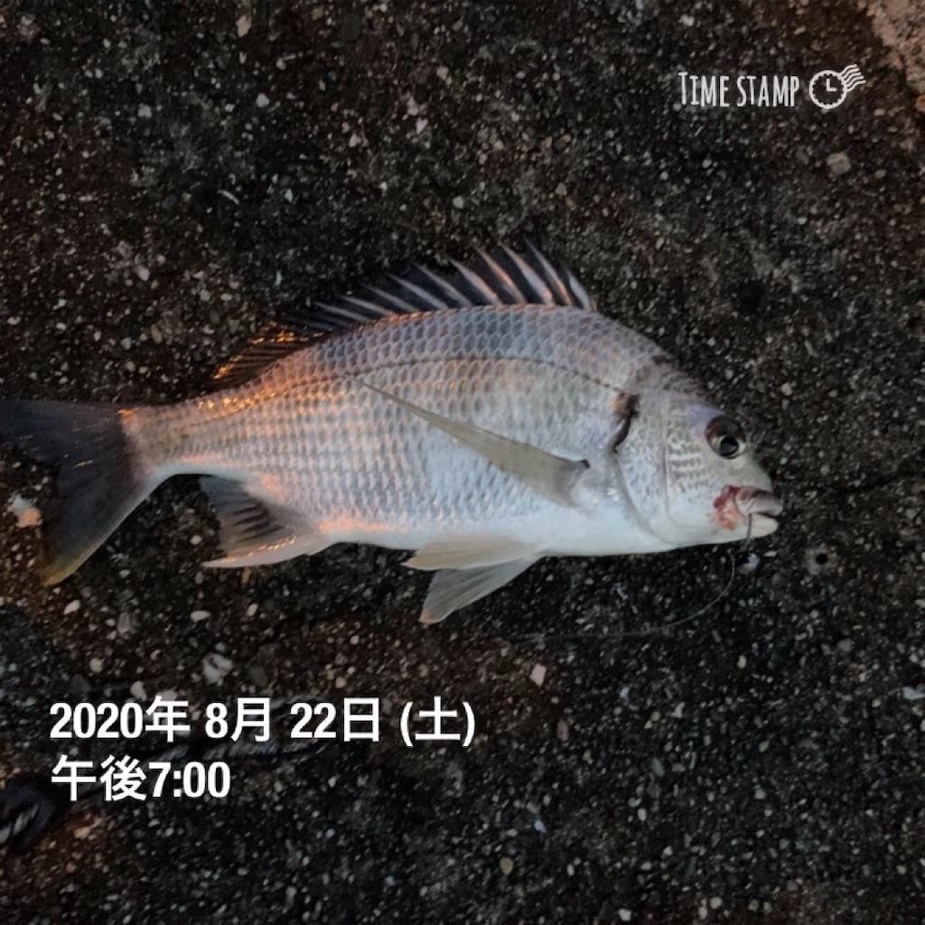 f:id:turikitikun1977:20200822205143j:image