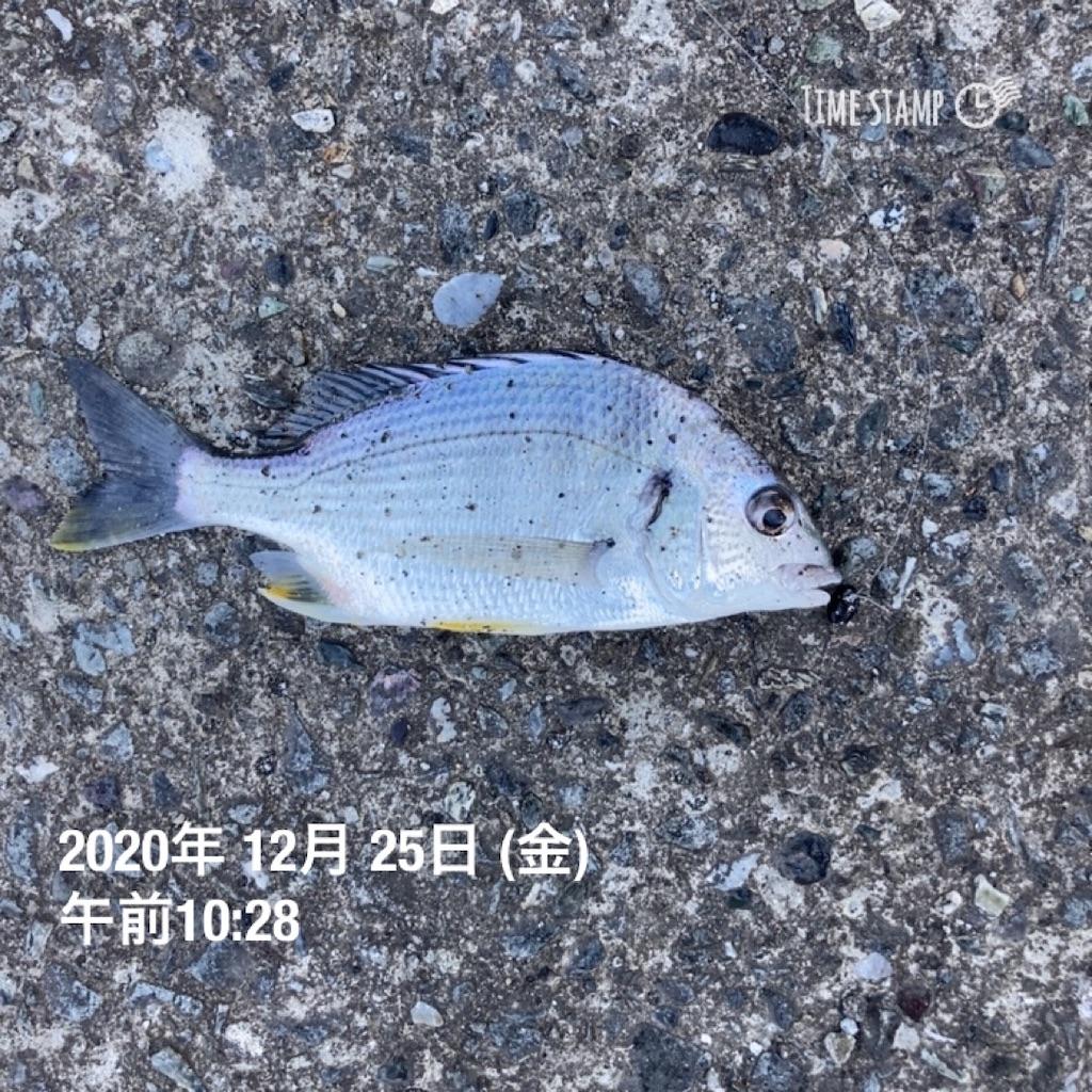 f:id:turikitikun1977:20201225104109j:image