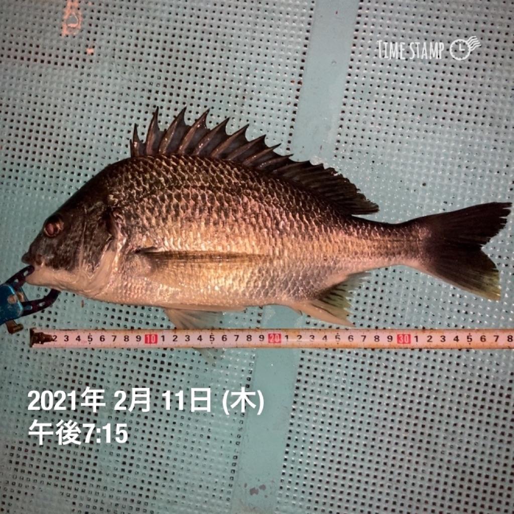 f:id:turikitikun1977:20210212081012j:image