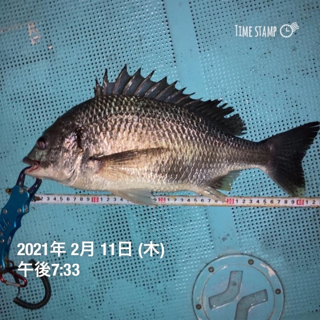 f:id:turikitikun1977:20210212081359j:image