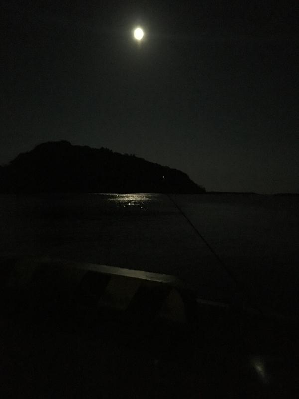 美々津漁港